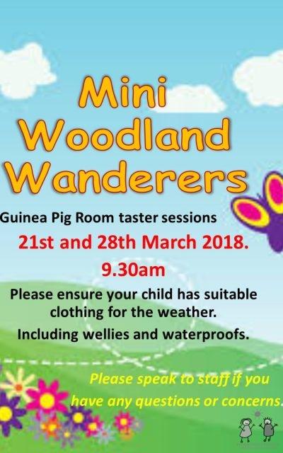 Mini Woodland Wanderers