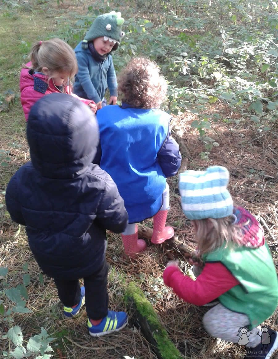 Activities for the children on our Woodland Wanderers days